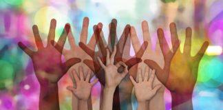eu survey on youth participation