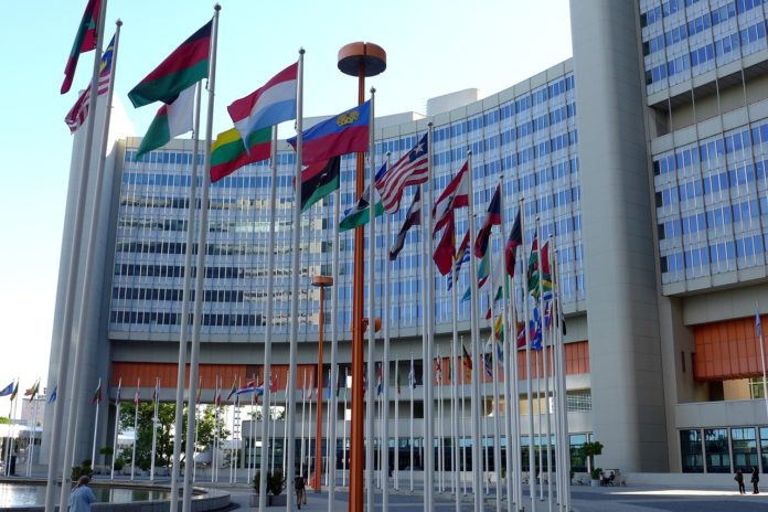united-nations-youth